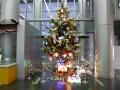 クリスマスツリー点灯中!!